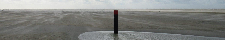 Trouwe wachters op Schiermonnikoog